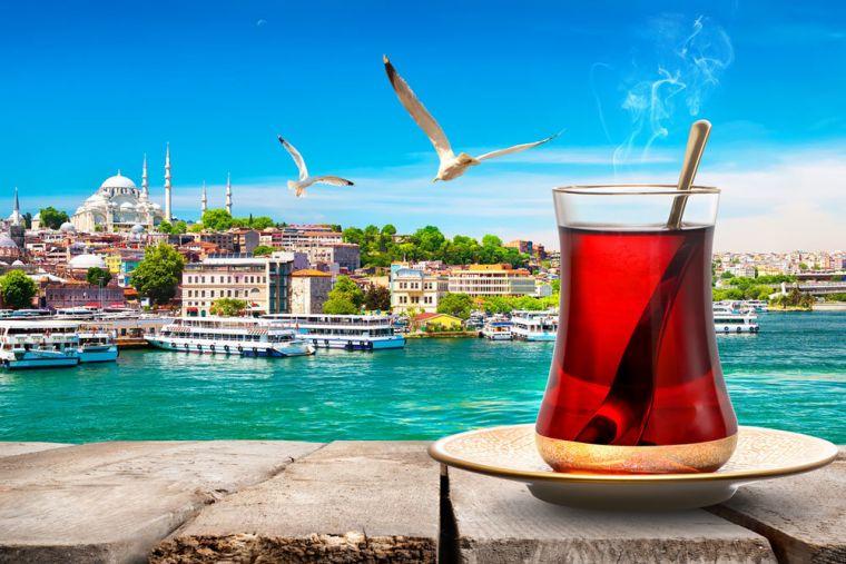 Турция из Волгограда! Открытие продаж!